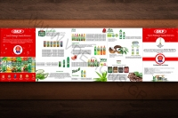 aloeveraking vdesigns