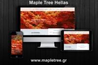 Mapletree presentation