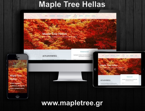 Maple Tree Hellas Website Presentation